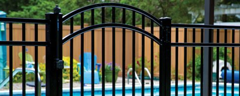 Black Aluminum Pool FenceBlack Aluminum Pool FenceBlack Aluminum Pool FenceBlack Aluminum Pool FenceBlack Aluminum Pool FenceBlack Aluminum Pool FenceBlack Aluminum Pool FenceBlack Aluminum Pool FenceBlack Aluminum Pool FenceBlack Aluminum Pool Fence