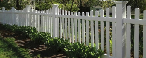 White Vinyl Decorative FenceWhite Vinyl Decorative FenceWhite Vinyl Decorative FenceWhite Vinyl Decorative FenceWhite Vinyl Decorative FenceWhite Vinyl Decorative FenceWhite Vinyl Decorative FenceWhite Vinyl Decorative FenceWhite Vinyl Decorative FenceWhite Vinyl Decorative FenceWhite Vinyl Decorative FenceWhite Vinyl Decorative FenceWhite Vinyl Decorative FenceWhite Vinyl Decorative FenceWhite Vinyl Decorative FenceWhite Vinyl Decorative Fence